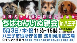 201205hachiouji.jpg